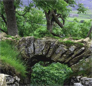 Ancient Scottish bridge